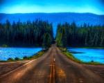 yol_manzarasi_ve_orman_1423_1